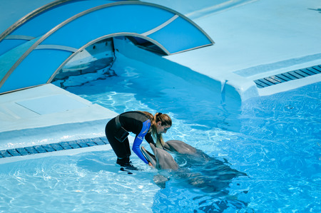 Portugal Europe - June 4, 2016: Beautiful dolphins show, Dolphinarium Zoomarine Oceans of Fun - Water Theme Park Editorial