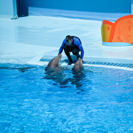 Algarve, Portugal - June 4, 2016: Dolphinarium - show with dolphins in Zoo Editorial