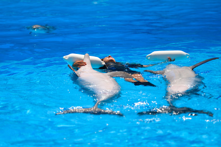 reflection of life: Algarve, Portugal - June 4, 2016: Dolphinarium - show with dolphins in Zoo Stock Photo