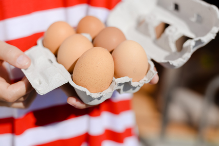 Woman hand holding eggs on striped background, closeup view