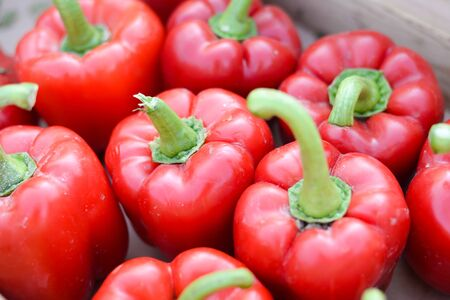 Group of fresh green and red peppers in a supermarket. Color full and healthy concept.