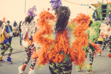sexy girl dance: Back view of blurred unrecognizable carnaval parade participants silhouette with colorful feathers. Colorful photo Stock Photo