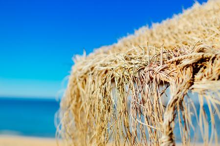 Sunny umbrella idyllic mood beach relaxation seascape blue sky coastline