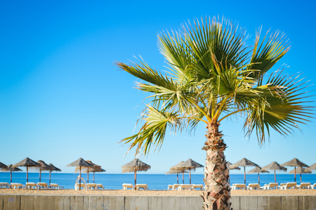 varadero: Sunny sky and chairs with parasol on the beautiful beach of Portugal Stock Photo