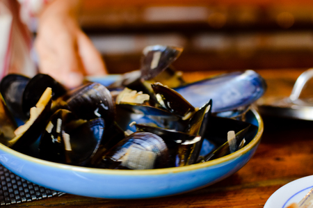 Closeup on Mussles Shells, abstract foody background