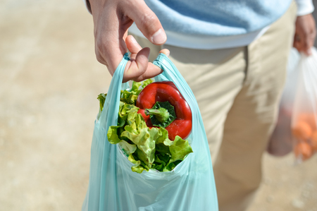 Close up on person buyer hold groceries in bags. Buy sell vegetables. Healthy wellbeing lifestyle background