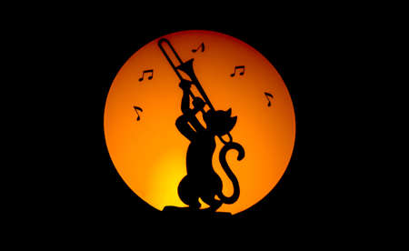 Cat making music by night with moon on the background photo