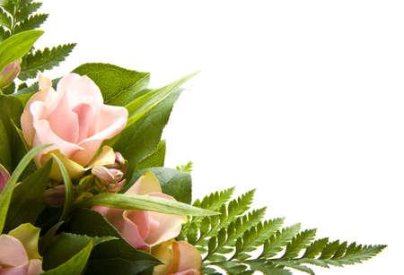 Bos van geïsoleerde over wit-roze bloemen