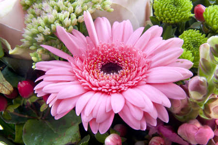 Bouquet with pink gebera in the center of it photo
