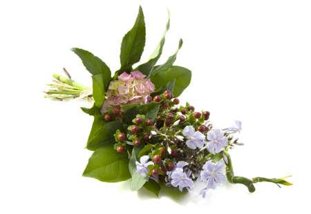 Reizender Blumenstrauß mit verschiedenen Arten von Blumen auf weißem