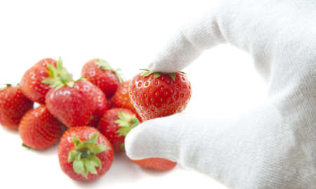 food testing: fresh strawberries on a pile with glove for background use