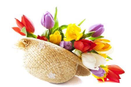 Kleurrijke Nederlandse tulpen in strooien hoed over wit Stockfoto