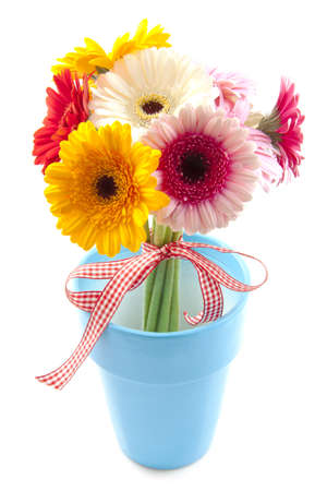 Colorful gerbera's in blue jar isolated over white photo