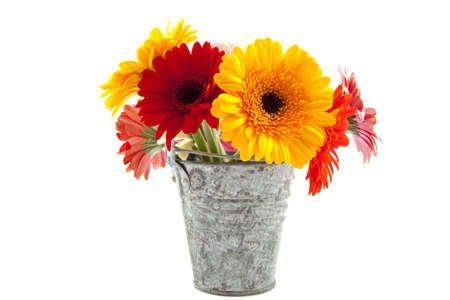 Bouquet colorful gerberas in vintage zinc bucket isolated over white photo