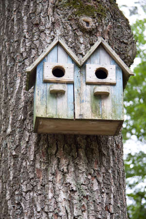 Bird house made of wood up in a tree photo