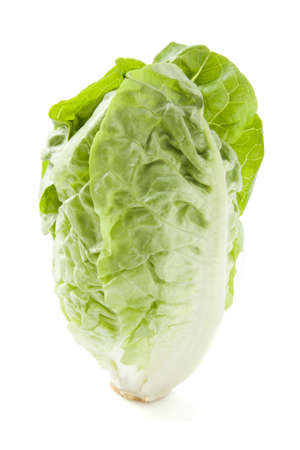 Fresh salad close-up isolated over white