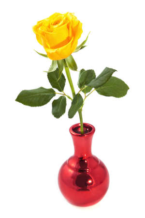 yellow roses: One yellow rose in metallic red vase isolated over white Stock Photo