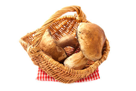 Two big mushrooms in a wooden basket isolated over white