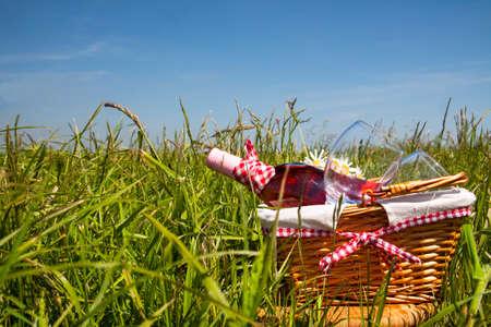 在草的野餐与鲜美食物和酒