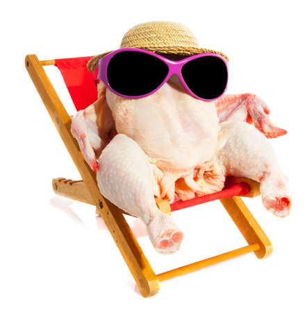 Chicken sitting on a beach chair with hat and glasses