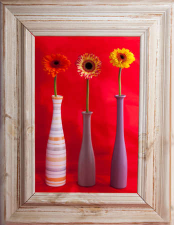 Flowers in vases with a rustic frame Stock Photo