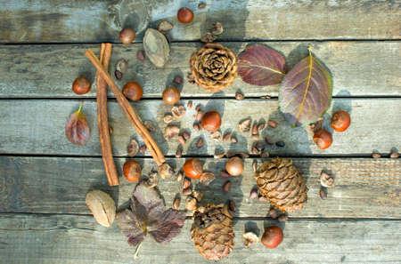 pine kernels: Concept autumn harvest mixture of nuts. Selective Focus Stock Photo