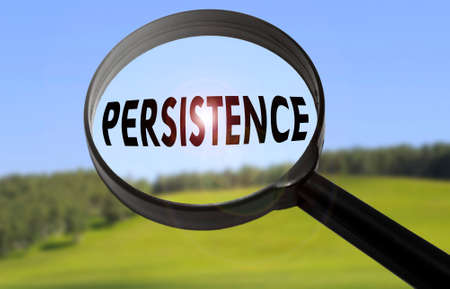 persistence: Magnifying glass with the word persistence on blurred nature background. Searching persistence concept