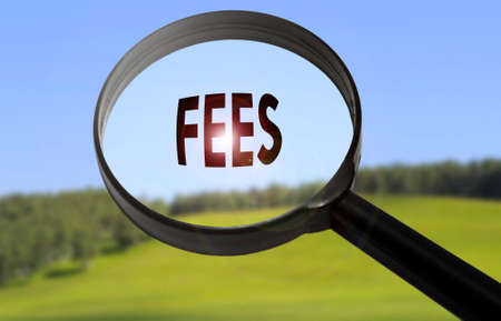 hidden fees: Magnifying glass with the word fees on blurred nature background. Searching fees concept Stock Photo