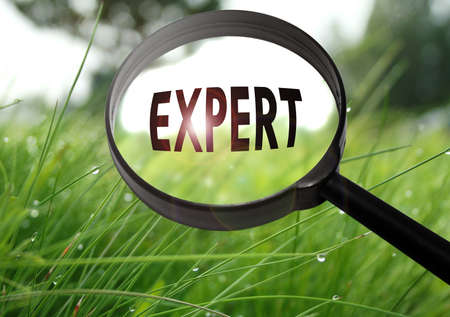 warranty questions: Magnifying glass with the word expert on grass background. Selective focus