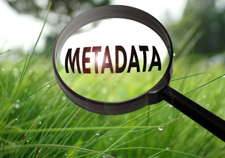 Magnifying glass with the word metadata on grass background. Selective focus