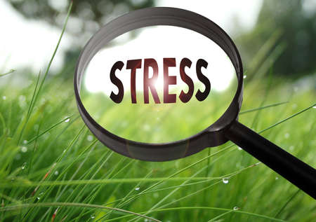 stressing: Magnifying glass with the word stress on grass background. Selective focus