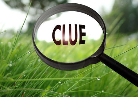 clue: Magnifying glass with the word clue on grass background. Selective focus