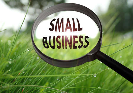 Magnifying glass with the word small business on grass background. Selective focus