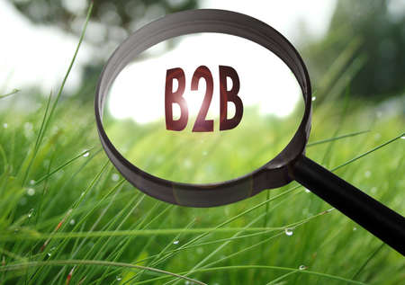 b2b: Magnifying glass with the word b2b (business to business) on grass background. Selective focus