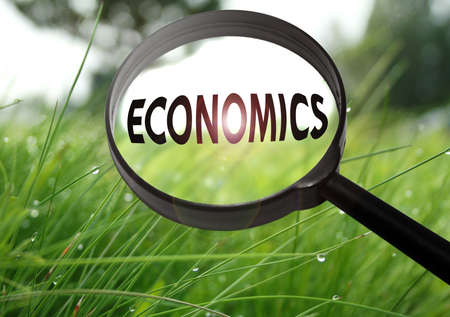 Magnifying glass with the word economics on grass background. Selective focus