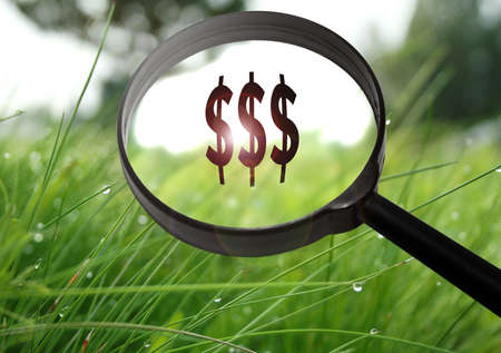 Magnifying glass with the word money (finance) on grass background. Selective focus