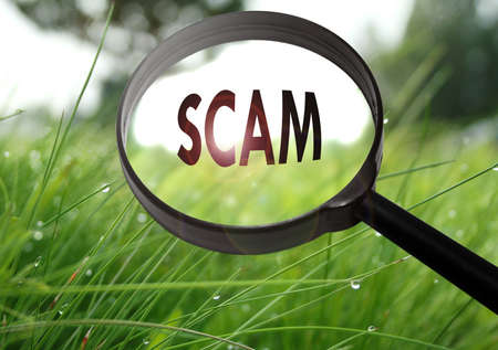 Magnifying glass with the word scam on grass background. Selective focus