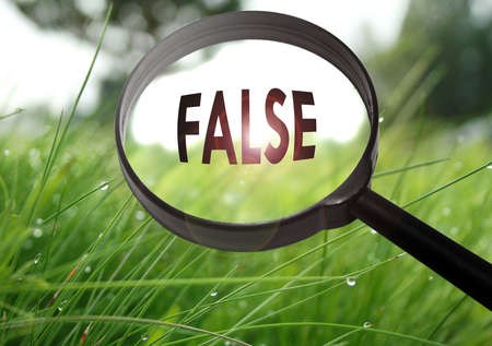 untrue: Magnifying glass with the word false on grass background. Selective focus Stock Photo
