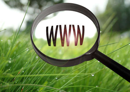 Magnifying glass with the word internet address on grass background. Selective focus