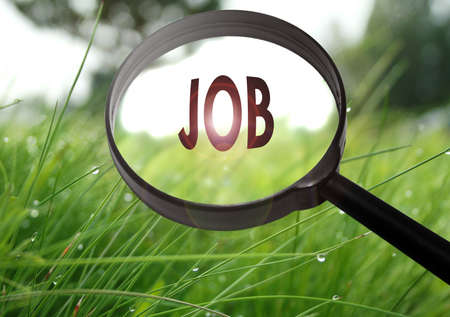 Magnifying glass with the word job on grass background. Selective focus