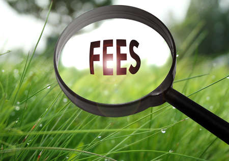 hidden fees: Magnifying glass with the word fees on grass background. Selective focus