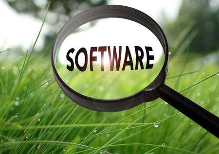 prototyping: Magnifying glass with the word software on grass background. Selective focus Stock Photo