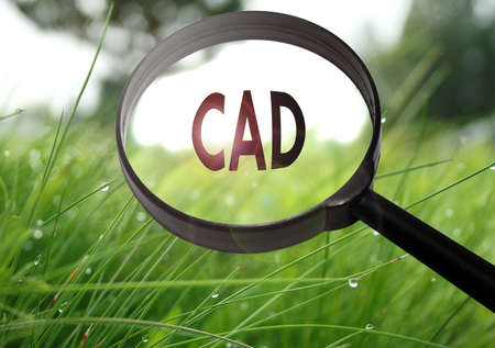 cad: Magnifying glass with the word CAD (computer aided design) on grass background. Selective focus