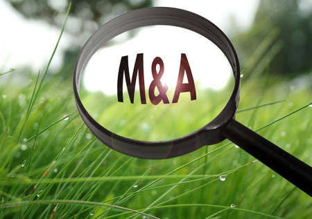 Magnifying glass with the word M&A (mergers and acquisition) on grass background. Selective focus Stock Photo