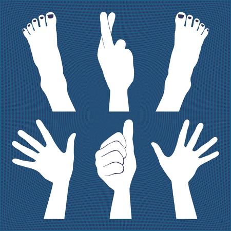manos y pies: Las manos y los pies siluetas. Vectores