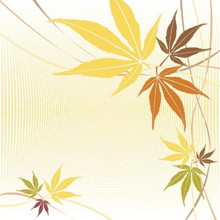 hojas de maple: Arce oto�o o ca�da deja vector de fondo.