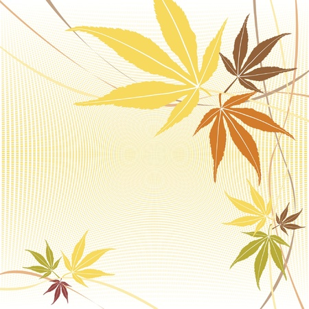 Autumn or fall maple leaves vector background.  Illustration