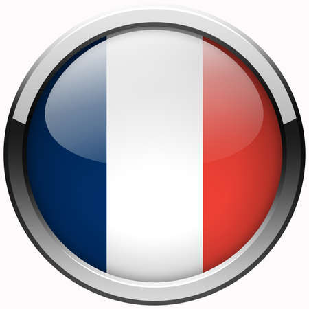 france flag gel metal button photo