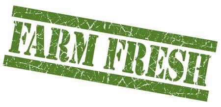 farm fresh: Farm fresh green square grunge textured stamp isolated on white