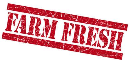 farm fresh: Farm fresh red square grunge textured stamp isolated on white Stock Photo